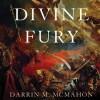 Divine Fury by Darren McMahon