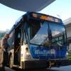 bus-route-150-bonnie-berman-wlrn